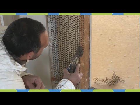 Altbau putzrisse Holzbalken sanieren Fachwerkhaus Renovierung