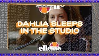 Dahlia Sleeps In The Studio At My Style My Sound