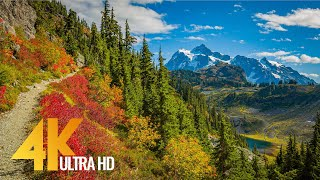This is a 4k first person POV hike of the Baker River Trail