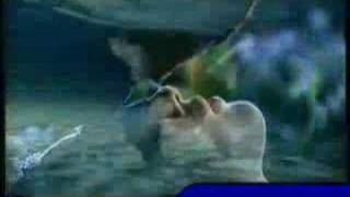 return of the condor heroes mv
