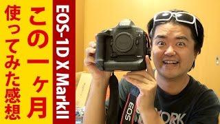 【写真の日】 Canon EOS-1D X Mark II 一ヶ月使用した感想!コストパフォーマンスが非常に良く、高い買物ではない