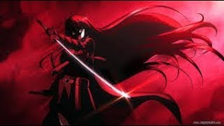 Akame ga Kill 《AMV》Just a Dream