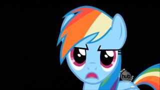 Rainbow Dash's Solo In May The Best Pet Win