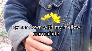 Ocean Alley Yellow Mellow(lyrics)