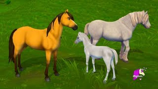 Spirit Helps Train A Baby Horse ! Spring Time Foal Quest Star Stable Online Game Video