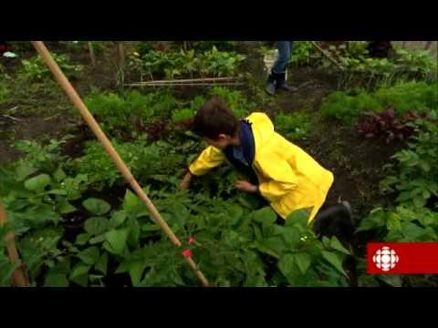 L'épicerie – Les jardins jeunes