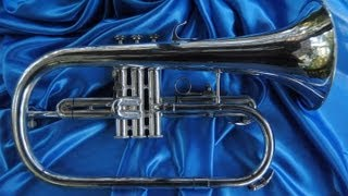 General overview of a Flugelhorn; a Blessing XL is used for demo purposes.