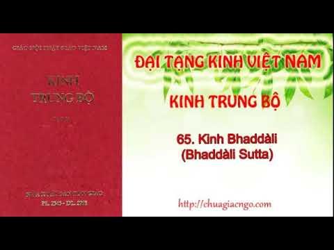 Kinh Trung Bộ - 065. Kinh Bhaddali