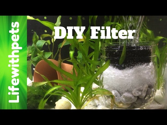 How To Make a DIY Sponge Filter for a Betta Fish Tank.