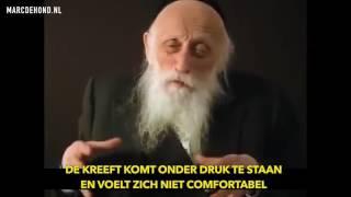 Rabbi Twerski over kreeften en stress