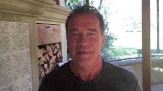 Donald Trump attack Arnold Schwarzenegger And Arnold WIN