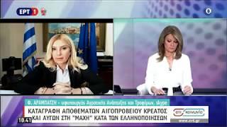 """Η ΥφυπΑΑΤ Φωτεινή Αραμπατζή στην εκπομπή της ΕΡΤ1 """"ΕΠΙ ΚΟΙΝΩΝΙΑ"""" (16.04.2020)"""