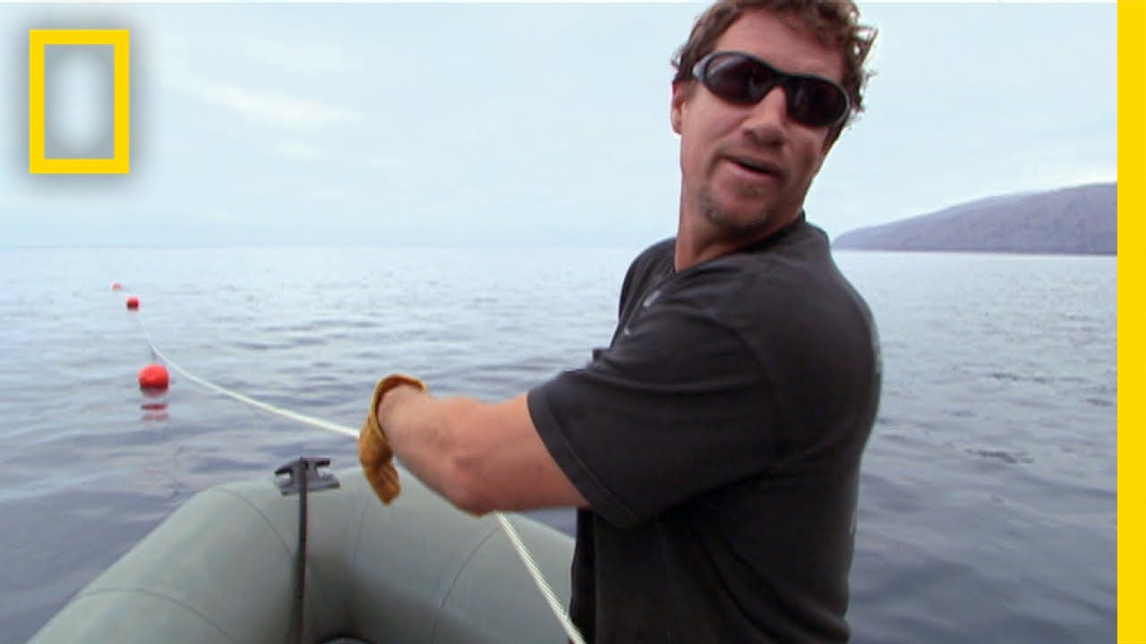 Meet the Shark Men: Brett | National Geographic thumbnail