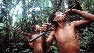 Nomads of the Rainforest PBS NOVA 1984