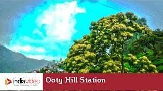 Road to Ooty, a hill station in Tamilnadu