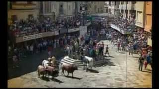 preview picture of video 'Entrada de toros y caballos de Segorbe'