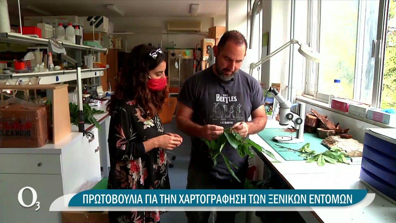 Τα… Alientoma και η δράση τους στην Ελλάδα | 23/06/2021 | ΕΡΤ