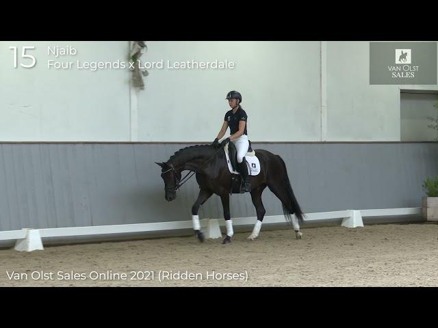 Njaib under saddle