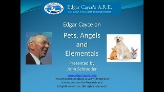 Edgar Cayce on Pets, Angels and Elementals