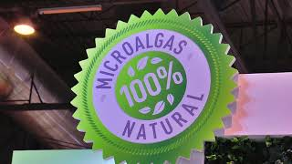 Microalgae Developments & Production