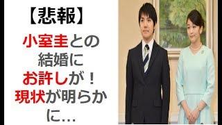 【悲報】 小室圭さんとの結婚にお許しが! 現状が明らかに…【芸能スクランヴル】