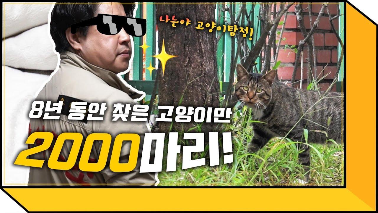 집 나간 고양이 바로 찾아드려요! (feat. 고양이탐정)