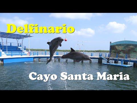 Acuario Delfinario Cayo Santa Maria