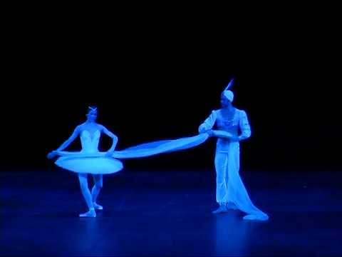 La Bayadère - Act III Scarf pas de deux & variation - Svetlana Zakharova, Nikolai Tsiskaridze