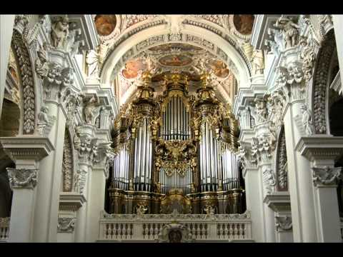Toccata and Fugue in D Minor (Best Version Ever)