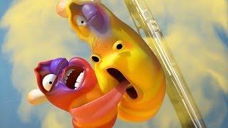 LARVA - WINDSCREEN WIPER | Cartoon Movie | Cartoons For Children | Larva Cartoon | LARVA Official
