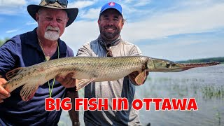Urban Fly Fishing in Ottawa |Rising Sun Charters