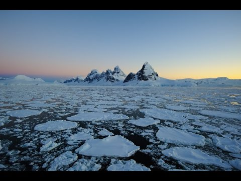 Antarctica Tour Price and What You Need to Know