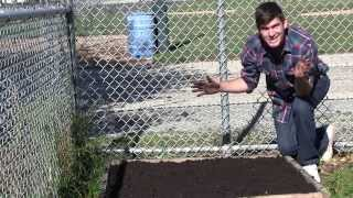 Simple Guide to preparing Your Garden Beds For Spring
