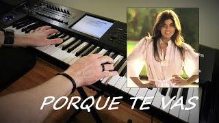 Jeanette - Porque Te Vas - Instrumental Chillout Version - Piotr Zylbert - Korg Kronos (Live)