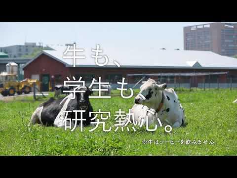 15秒CM「牛トーク」篇