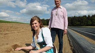 preview picture of video 'Spargel & Erdbeeren Ilmberger - Schrobenhausener Spargel aus Peutenhausen'