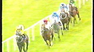 1998 - Curragh - Tattersalls Gold Cup - Daylami