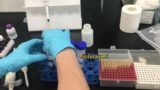 Bioeasy-Furazolidone Metabolite (AOZ) ELISA Test Kit