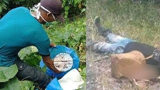 Mayat Tanpa Kepala dan Tangan Ditemukan di Kebun, Kepala Korban Ditemukan Polisi di Jurang