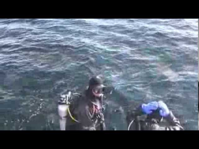 Scuba Diving the Boeing 737 Artificial Reef at Chemainus BC