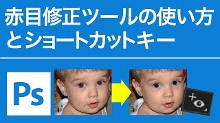 Photoshop 無料講座 赤目修正ツールの使い方とショートカットキー