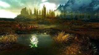 Skyrim - Requiem(No Death). #1. Босмер-Лучник.