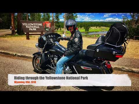 mp4 Harley Yellowstone, download Harley Yellowstone video klip Harley Yellowstone