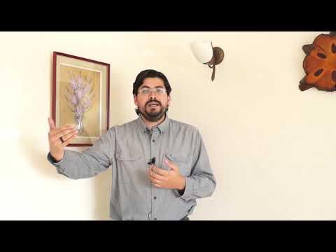 video Ediciones Universitarias PUCV - Cap 06 - Francisco Bahamonde