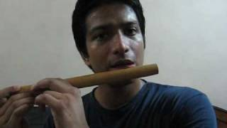 FLute Lesson 1: basics