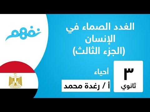 الغدد الصماء في الإنسان (الجزء الثالث) - الأحياء - للثانوية العامة -  المنهج المصري -نفهم