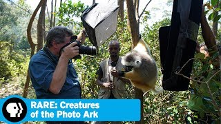 RARE: CREATURES OF THE PHOTO ARK | Official Trailer | PBS