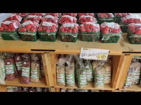 Wards Berry farm sharon fruit picking|| strawberry picking in usa|| fruit picking in usa farm tour