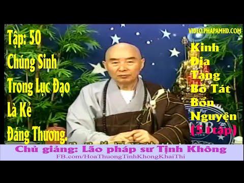 TẬP 50, Chúng Sanh Trong Lục Đạo Là Kẻ Đáng Thương - Địa Tạng Bồ Tát Bổn Nguyện Kinh Giảng Ký