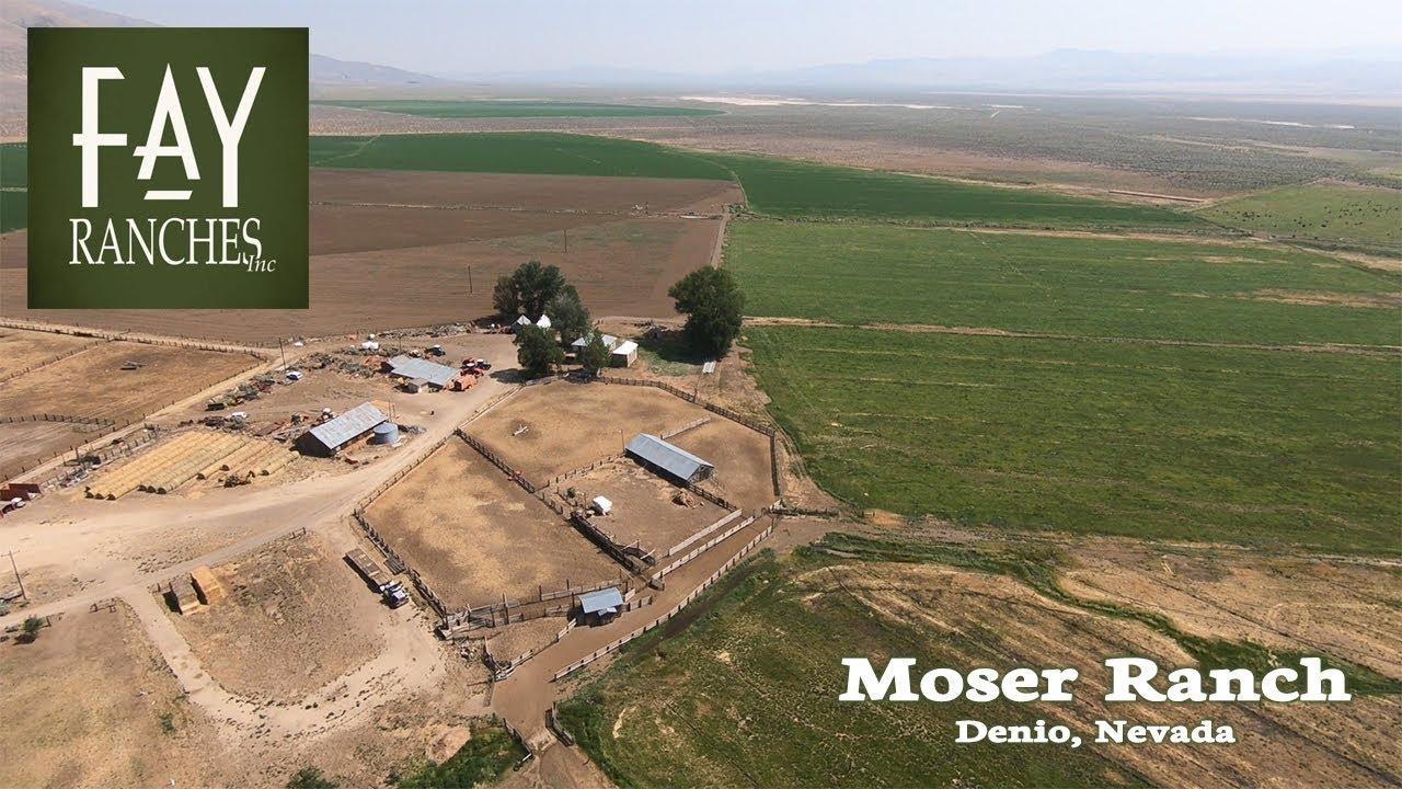 Moser Ranch